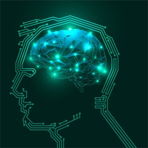 How to Become Bionic: Eight Takeaways from BCG's 2015 European Lean Summit