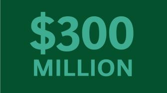 300 Million BTN ZBB