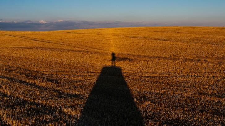 trumps-agribusiness-1695x950-tcm9-166983.jpg