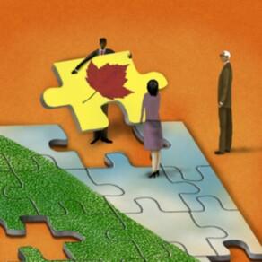 Role of Portfolio Management in Value Creation