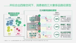 contrary-growth-chinese-luxury-goods-consumption-insights-into-three-typical-paths-slide3.JPG