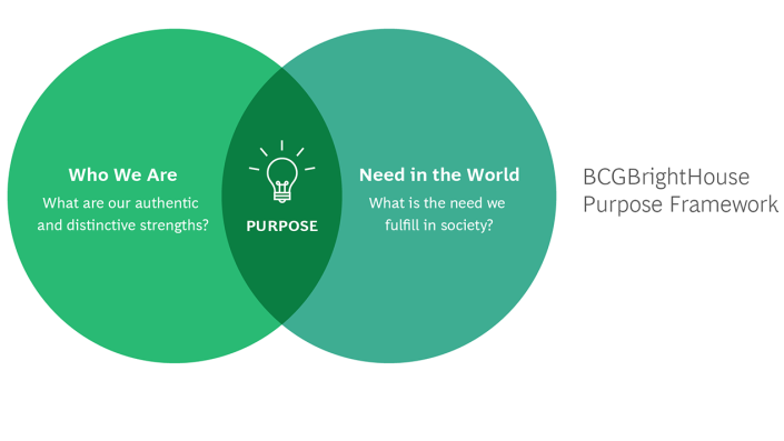 What is Purpose Infographic