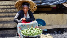 Food-System-Transformative-Integrated-Policy-for-Sub-Saharan-Africa.jpeg