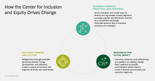 How-the-Center-for-Inclusion-and-Equity-Drives-Change-Graphic .png