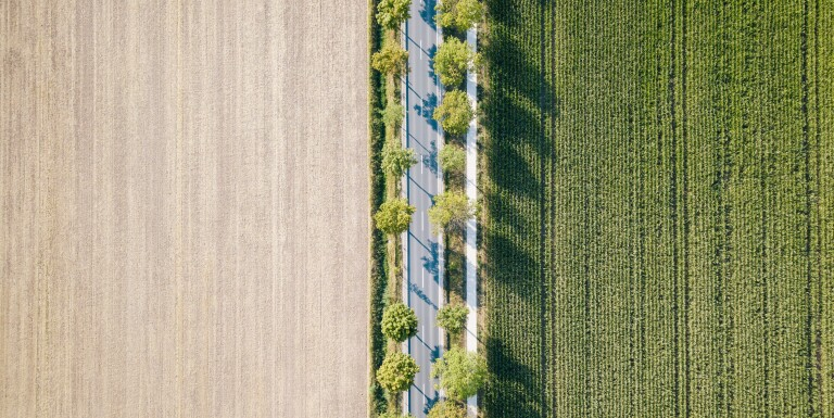 How Prolonged Trade Wars Could Hurt US Agribusiness for Good