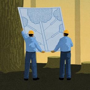 Should Companies Buy Growth?