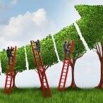 five-secrets-to-scaling-up-agile-1694x950-tcm9-25205.jpg