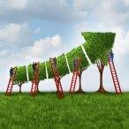 five-secrets-to-scaling-up-agile-640x640-tcm9-42223.jpg