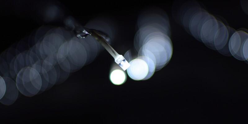 bionic-company-2880x1620-tcm9-221349.jpg