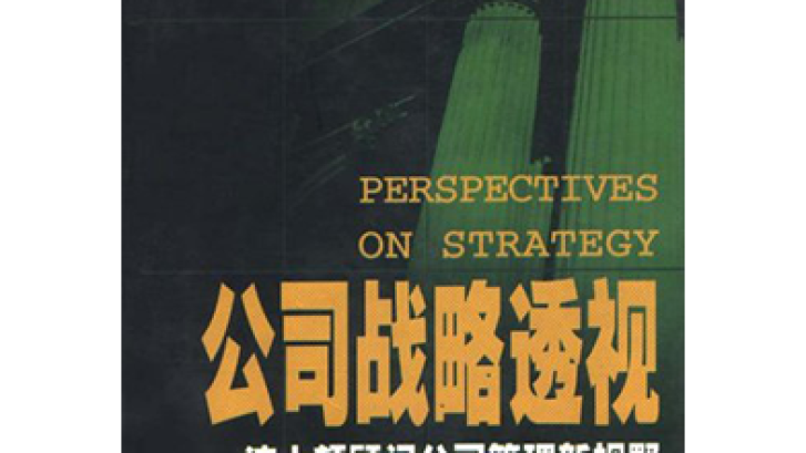 perspectives-on-strategy-cn-tcm9-165500.png