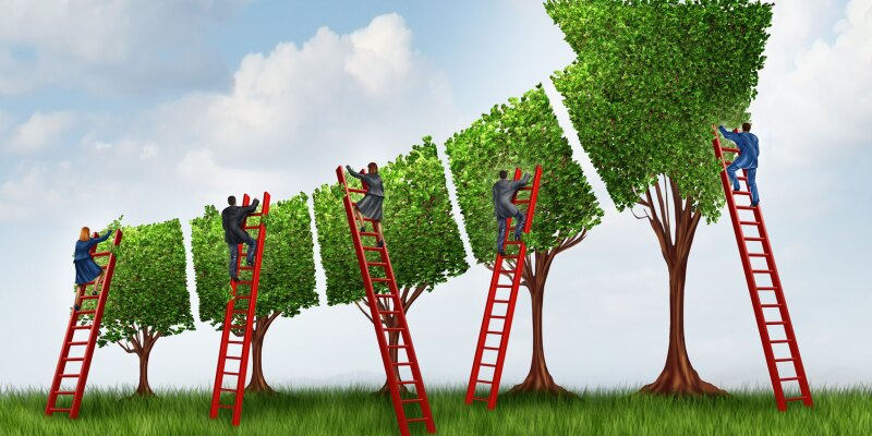 five-secrets-to-scaling-up-agile-1694x950-tcm9-87046.jpg