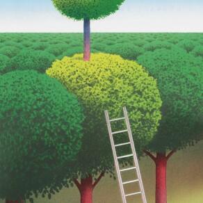 Organizational Capabilities Matter